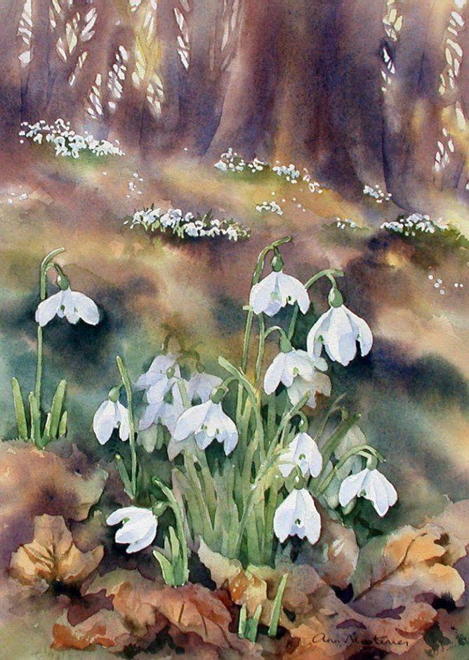 perce neige des fleurs au bout du pinceau pinterest perce neige perce et aquarelles. Black Bedroom Furniture Sets. Home Design Ideas