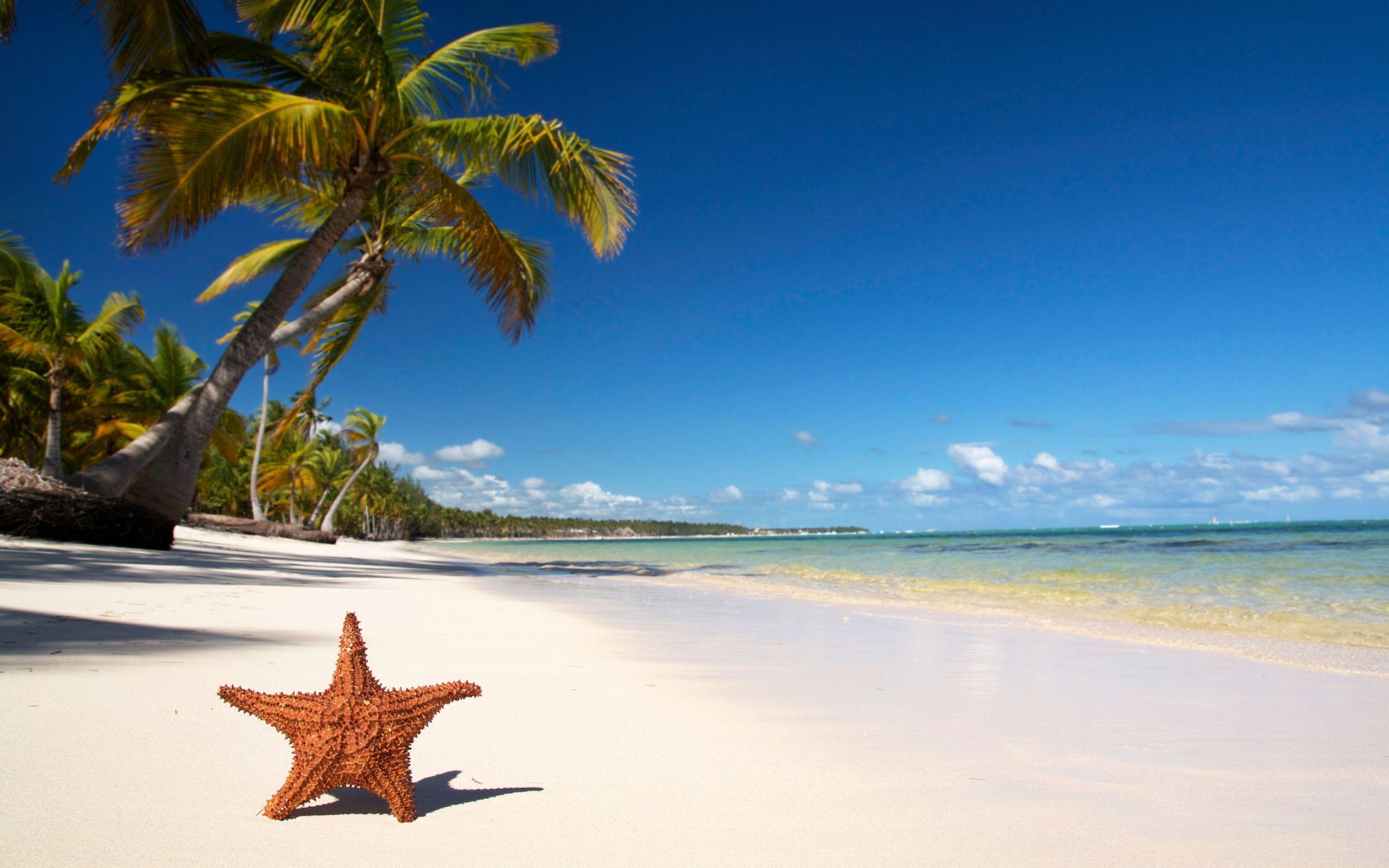tropical beach *** wide desktop background wallpaper free | travel