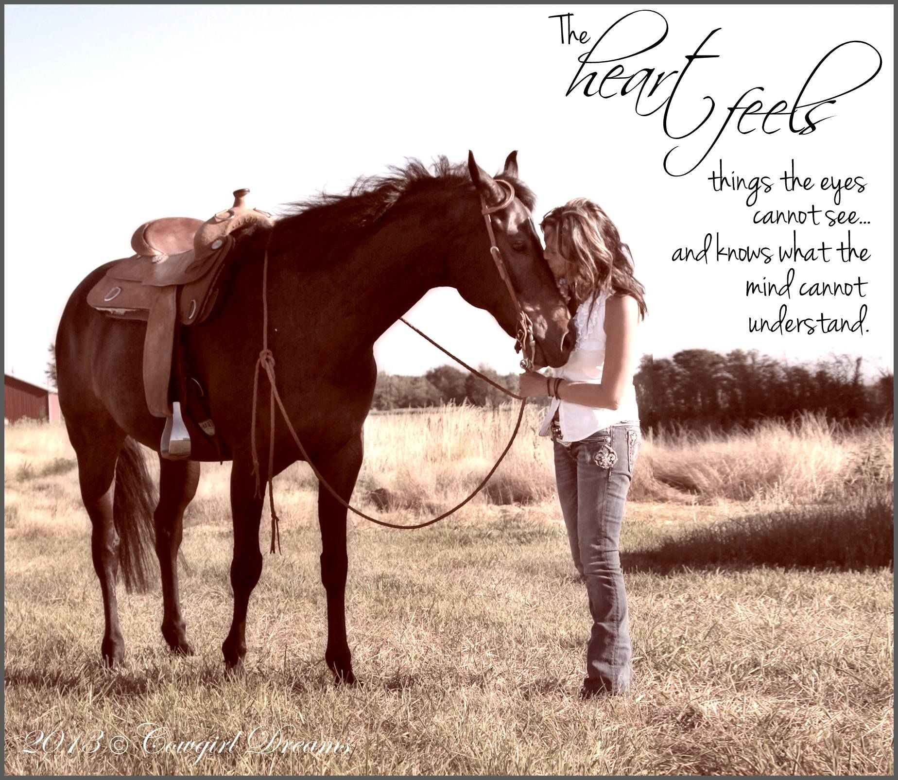 Horses have been my true love all my life...