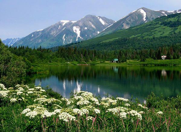 Google Image Result For Http Imgs Abduzeedo Com Files Articles Photos Alaska Idyllic Alaska By Wa Beautiful Photography Nature Alaska Travel Beautiful Places