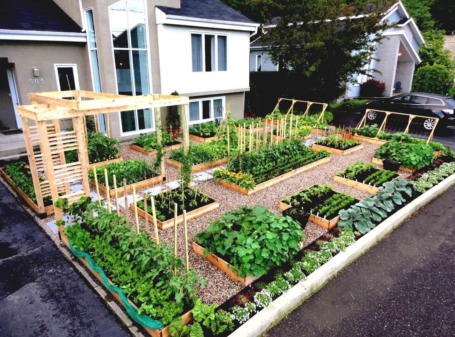 Large Garden Survival Garden Emergency Food Seeds 50 Kinds Heirloom Usa Seeds In 2020 Garden Bed Layout Garden Layout Garden Design Layout