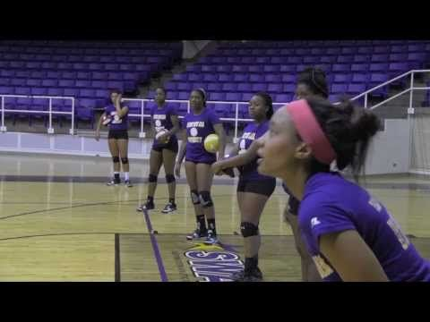 Prairie View A M Panther Athletics Volleyball Training Women Volleyball Volleyball News