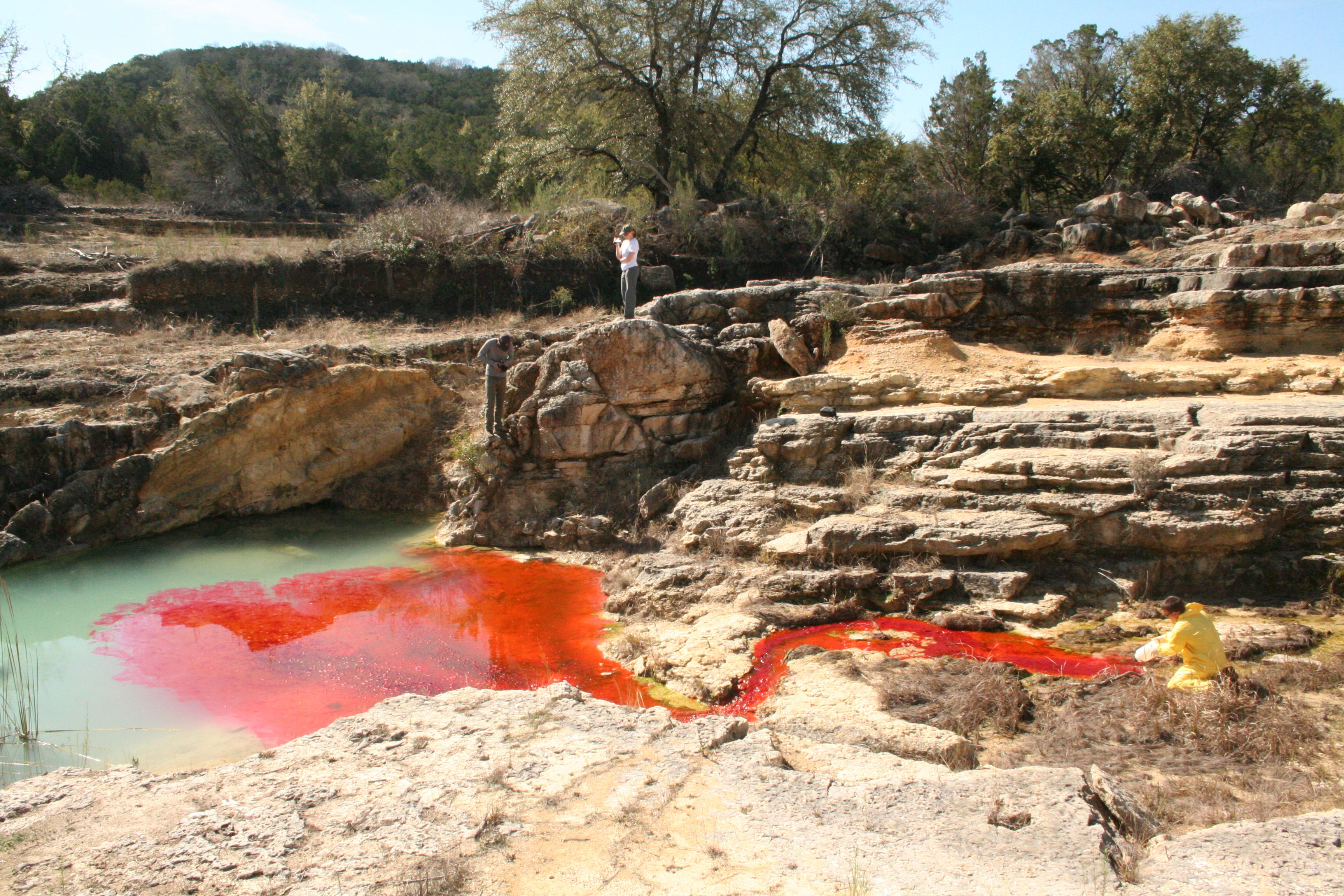 Injection of eosine dye at Canyon Lake Gorge.  The dye injection was in support of a study with Guadalupe Blanco River Authority and Southwest Research Institute (SWRI) as part of SWRI's investigation of the role of faults and fractures in controlling groundwater flow in the Texas Hill County.