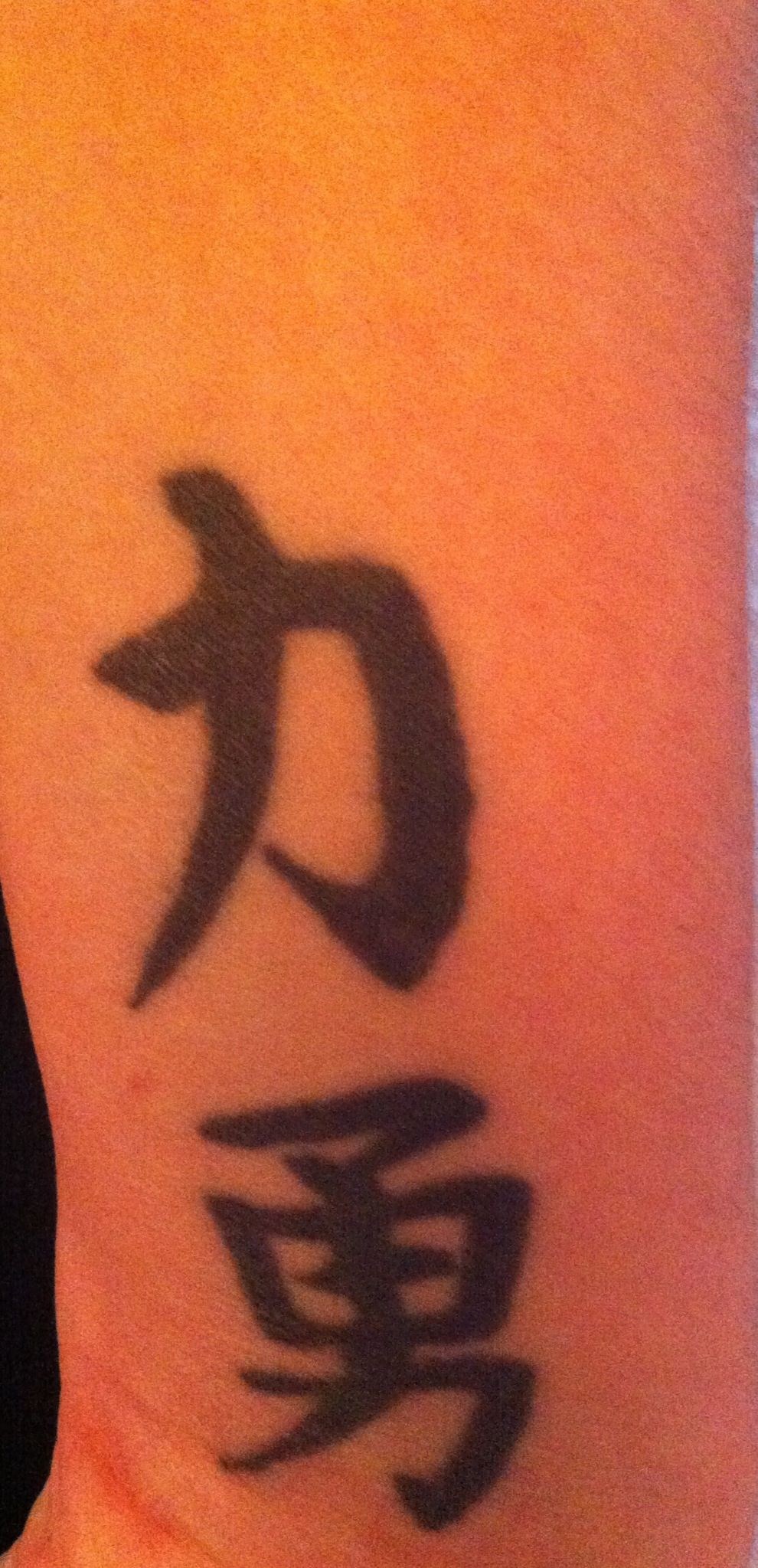 Chinese Animal Symbol For Strength Www Miifotos Com