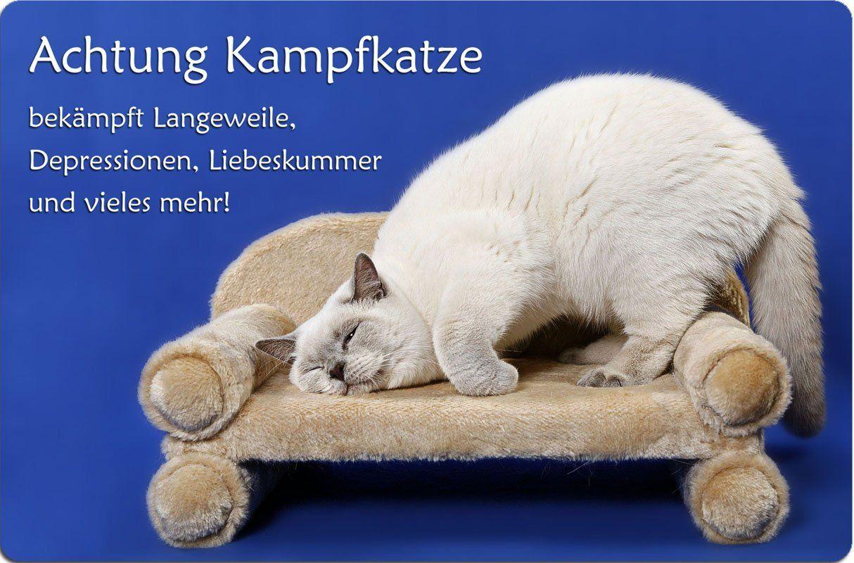 Werbung Britisch Kurzhaar Katze Metall Warnschild Schild Kurzhaar Katzen Katzen Britisch Kurzhaar