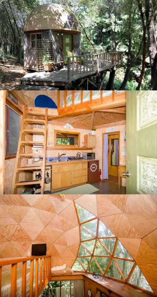 Exceptional Would You Stay In The Mushroom Dome Cabin?