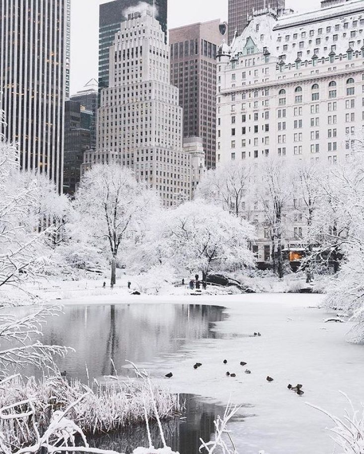 25 Stunning Winter Photographs Snow In The City Winter Snow Iphone Wallpaper Winter Images W New York Christmas New York Wallpaper New York Photography