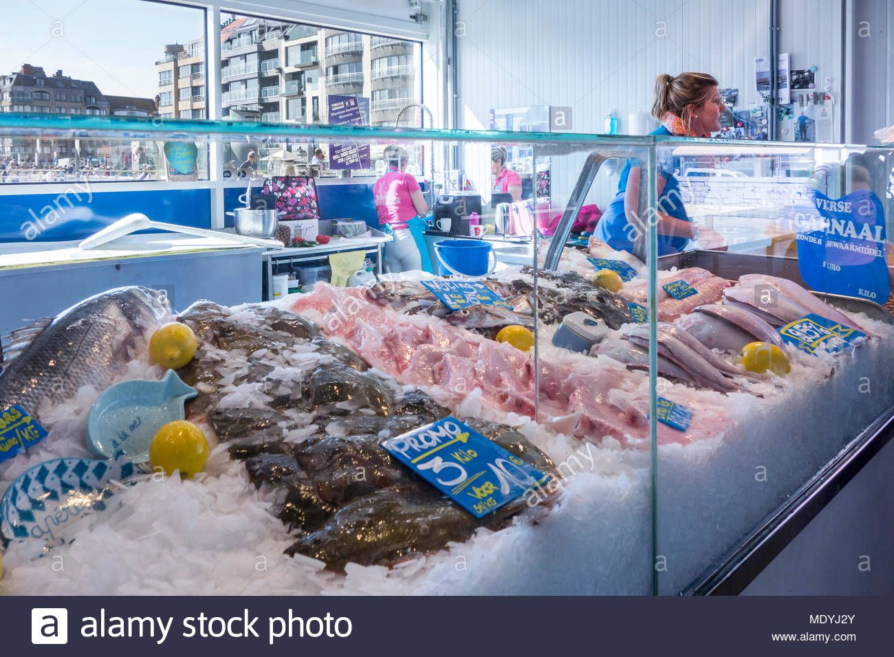 Counter With Fresh Fish On Display At The Open Air Fish Market Vistrap On The Quay In The City Ostend Oostende Ostend Food Business Ideas Fresh Fish Market