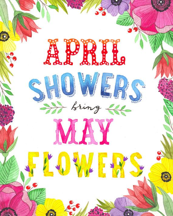 "April Showers Bring May Flowers Spring Chalkboard: 8"" X 10"" April Showers Bring May Flowers Illustration"