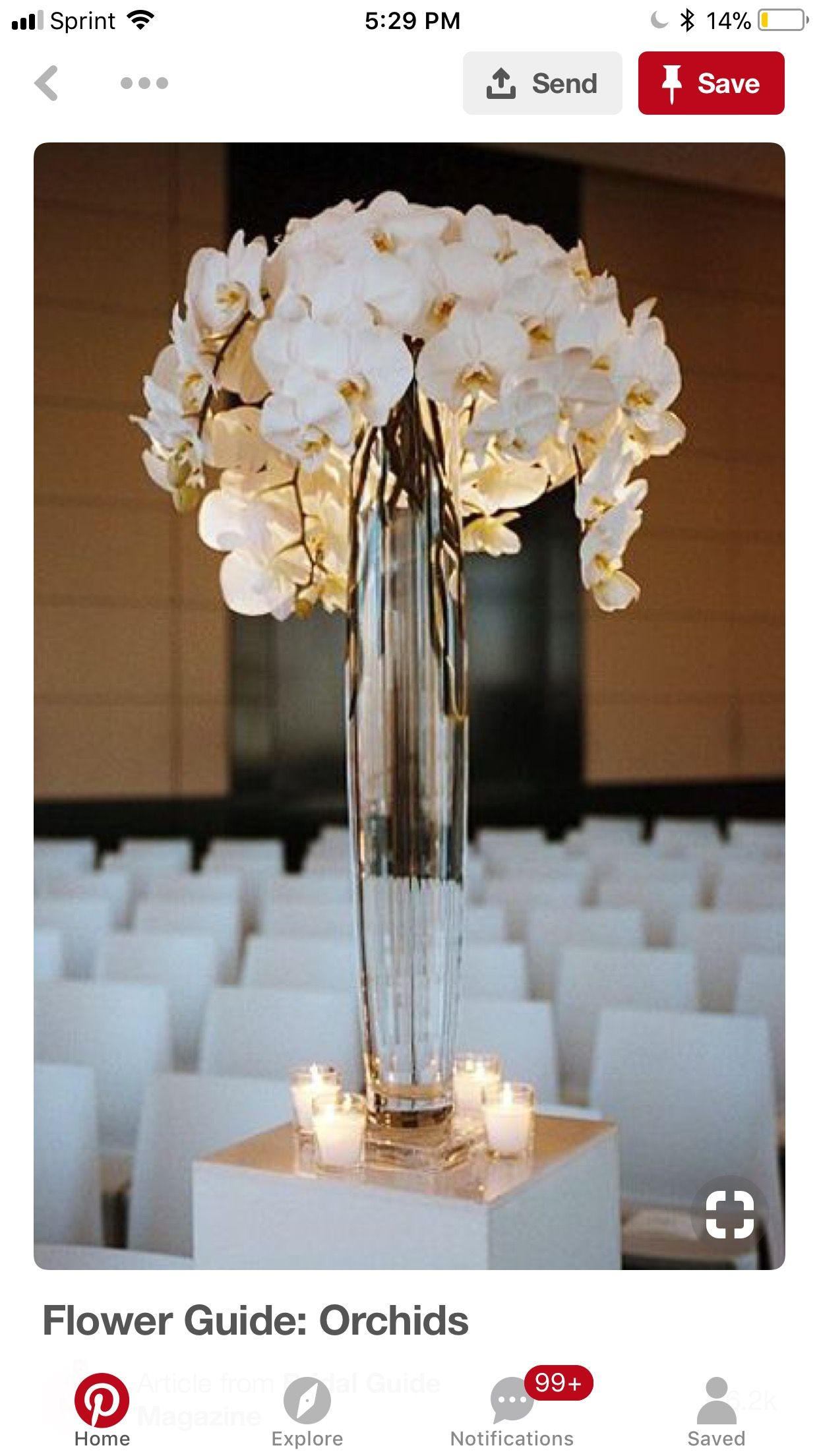 Pin by uzpsi on in pinterest wedding flowers
