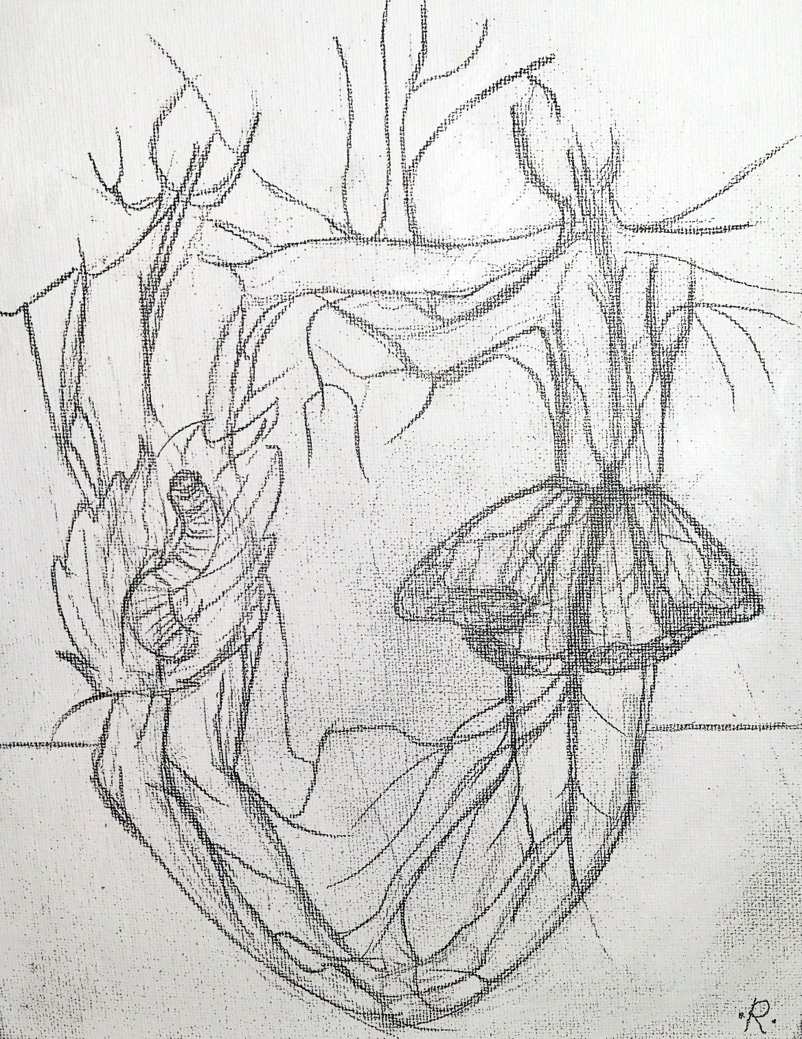Riendoart losangeles artist arte art hispanicartist hispana sketchartist pencil pemcilart veins woman man zen meditation sketch butterfly