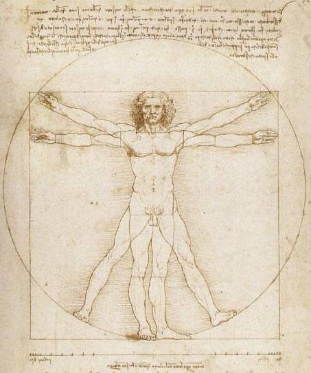 Leonardo Da Vinci Vitruvian Man Da Vinci Vitruvian Man Leonardo Da Vinci