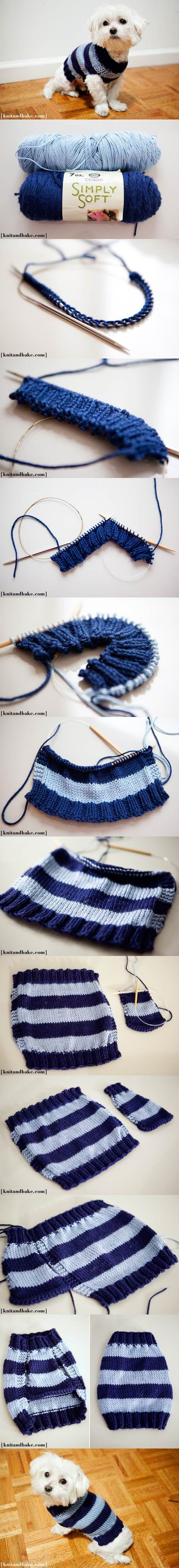 DIY Easy Knitted Dog Sweater 2 | Tejido | Pinterest | Mascotas, Ropa ...