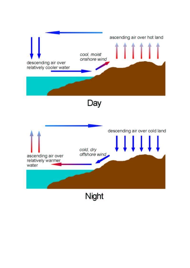 Worksheets Sea Breeze Diagram land and sea breezes diagram pinterest diagram