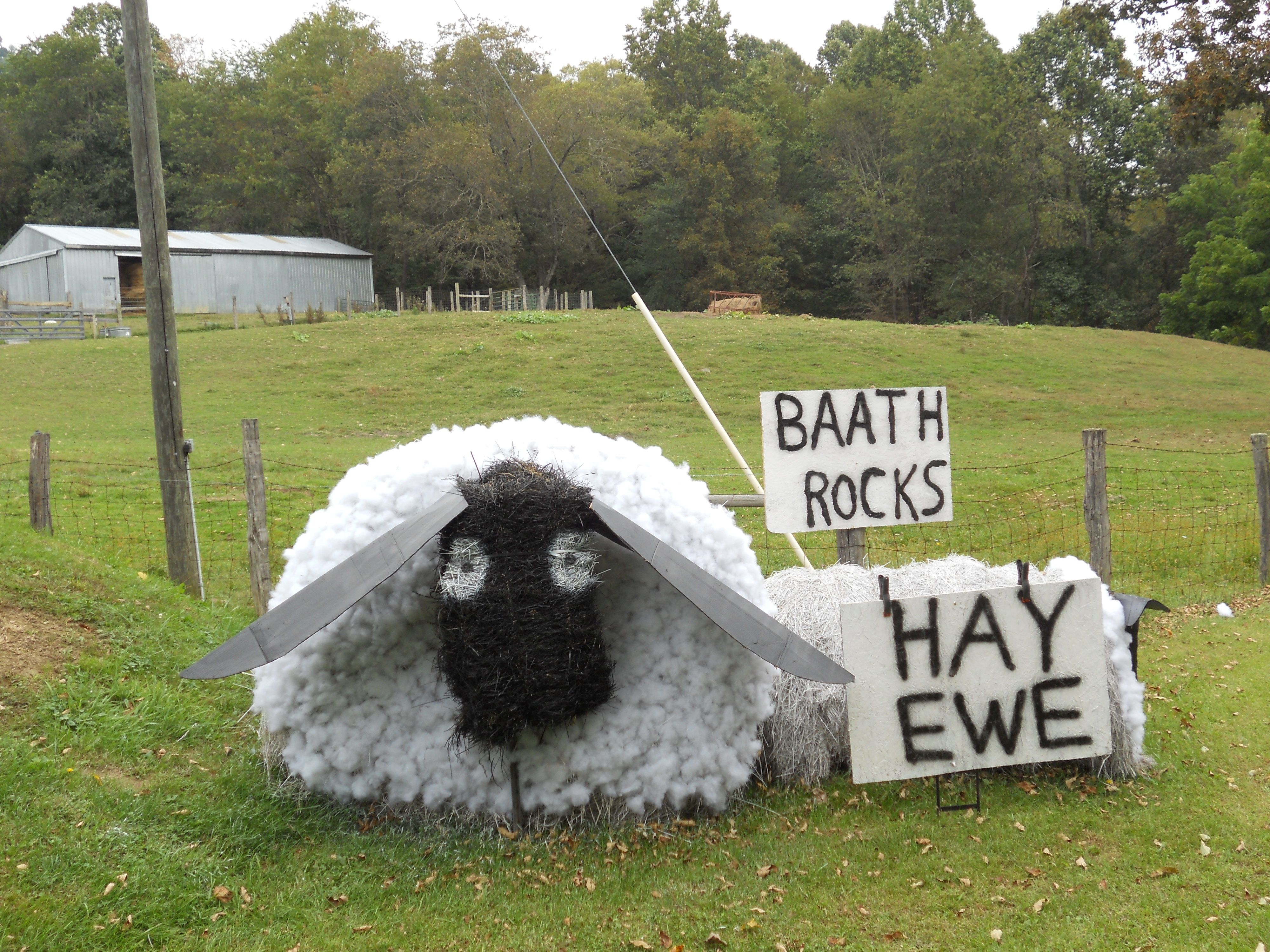 Hay bale decor black faced ewe hay bale decoration for Bales of hay for decoration