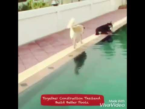Together Construction Thailand - YouTube