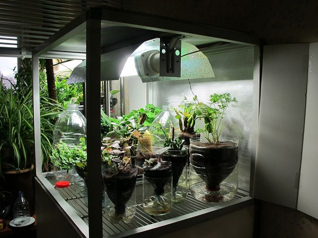 Home Made Grow Box Hydroponic Gardening Hydroponics 400 x 300