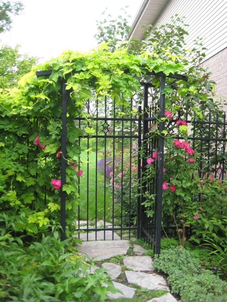 Diese eiserne Tor und Zaun ist geschmückt mit einer schönen