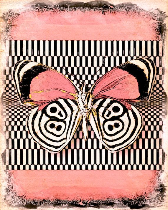 butterfly wall art black pink white collage decorative ...