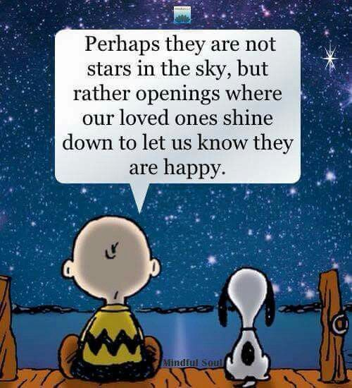 Perhaps They Are Not Stars In The Sky But Rather Openings Where