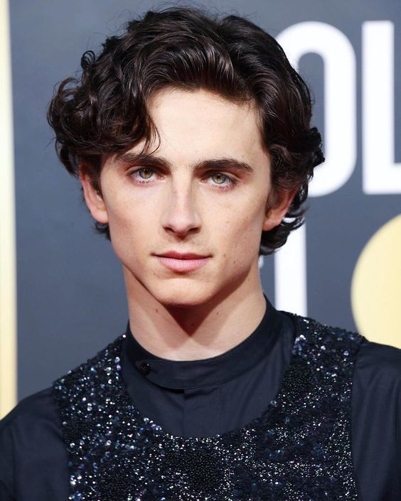 Timothee Chalamet 10 Curiosities About The Actor Of The King And Call Me By Your Name Timothee Chalamet Pretty People Actors