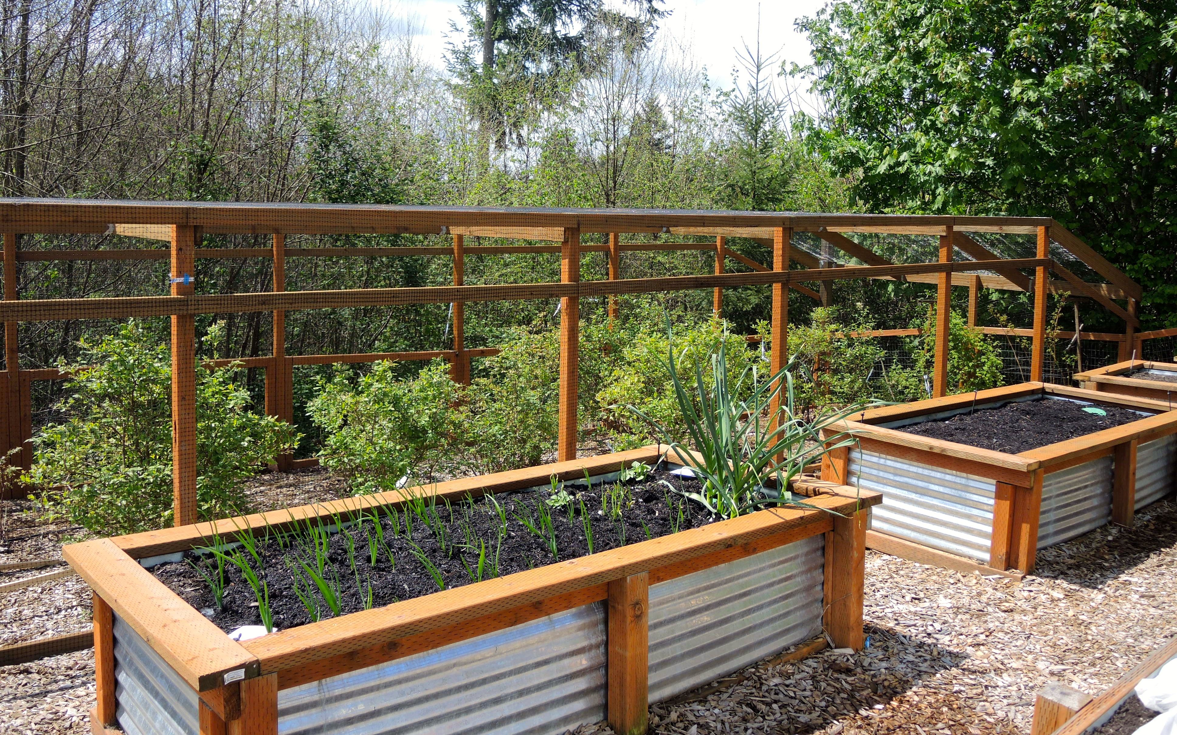 Galvanized Raised Beds With Instructions Vegetable Garden Raised