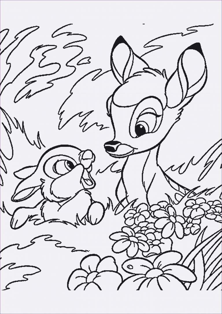 Ausmalbilder Hasen Zum Ausdrucken Inspirierend Hasen Bilder Kostenlos Fotos Designs Ausmalbilder Ostern Kostenlos Disney Farben Ausmalbilder Malvorlagen Tiere
