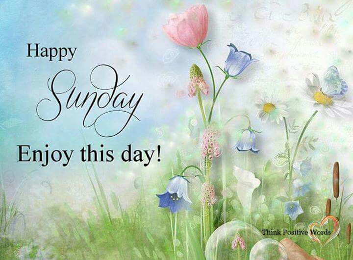 Happy Sunday, Enjoy This Day!
