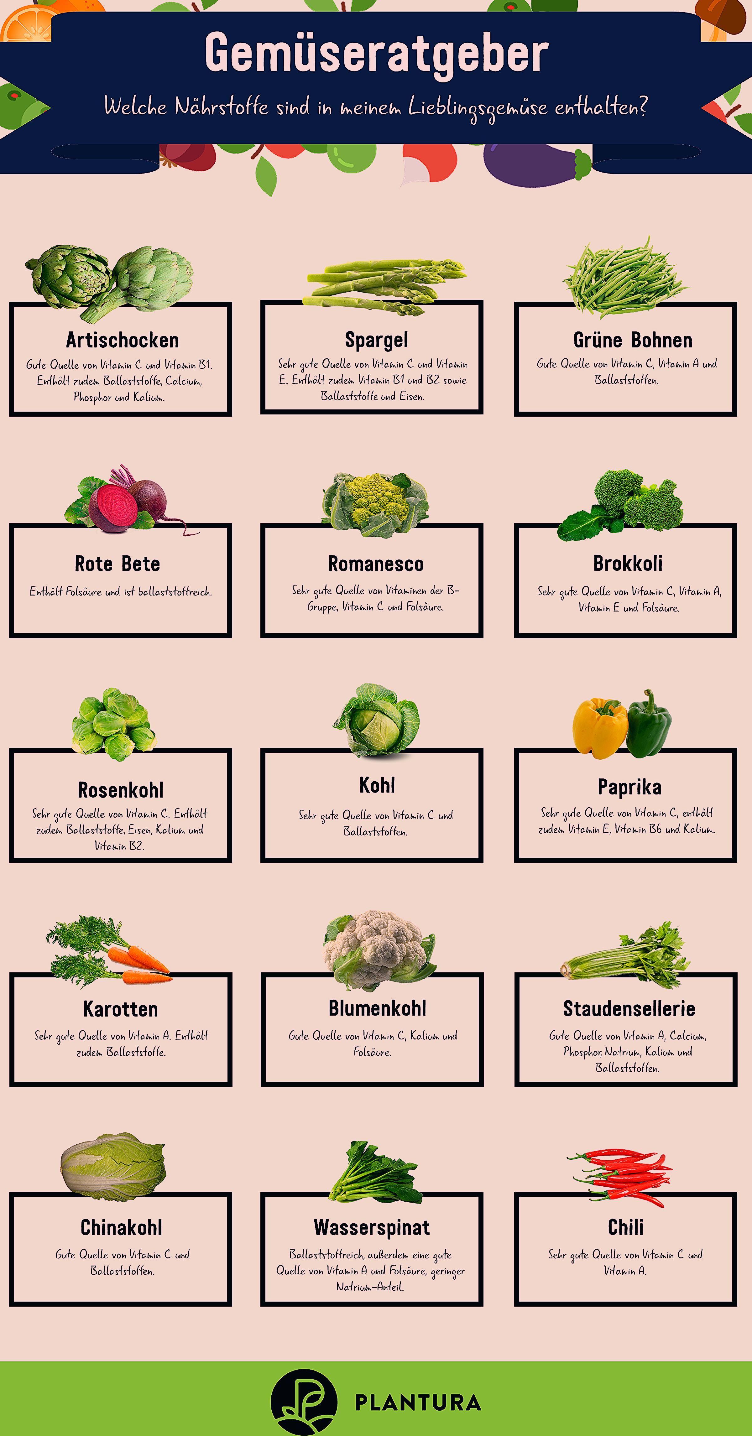 Photo of Gemüsearten: So teilt man Gemüse ein – Plantura