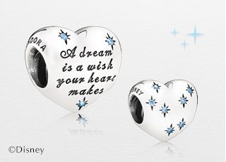 A Dream Is A Wish Your Heart Makes The Disney Cinderella Heart