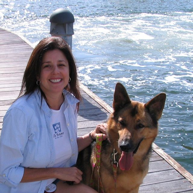 Dog Trainer In Broward Fort Lauderdale Florida Pets Puppy