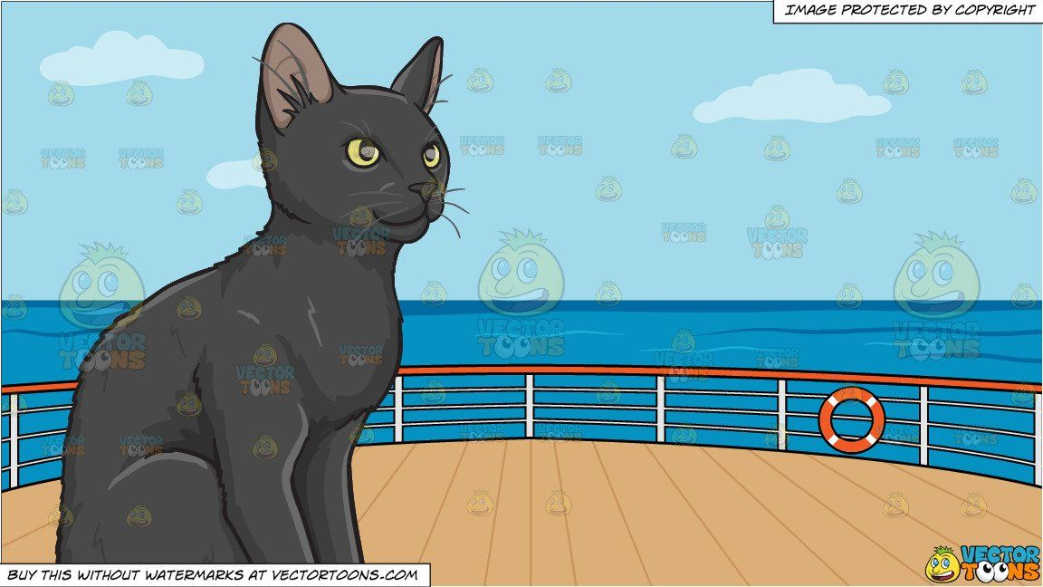 A Contented Black Kitten And Deck Of A Cruise Ship With Deck Chairs Background Black Kitten Cruise Ship Deck