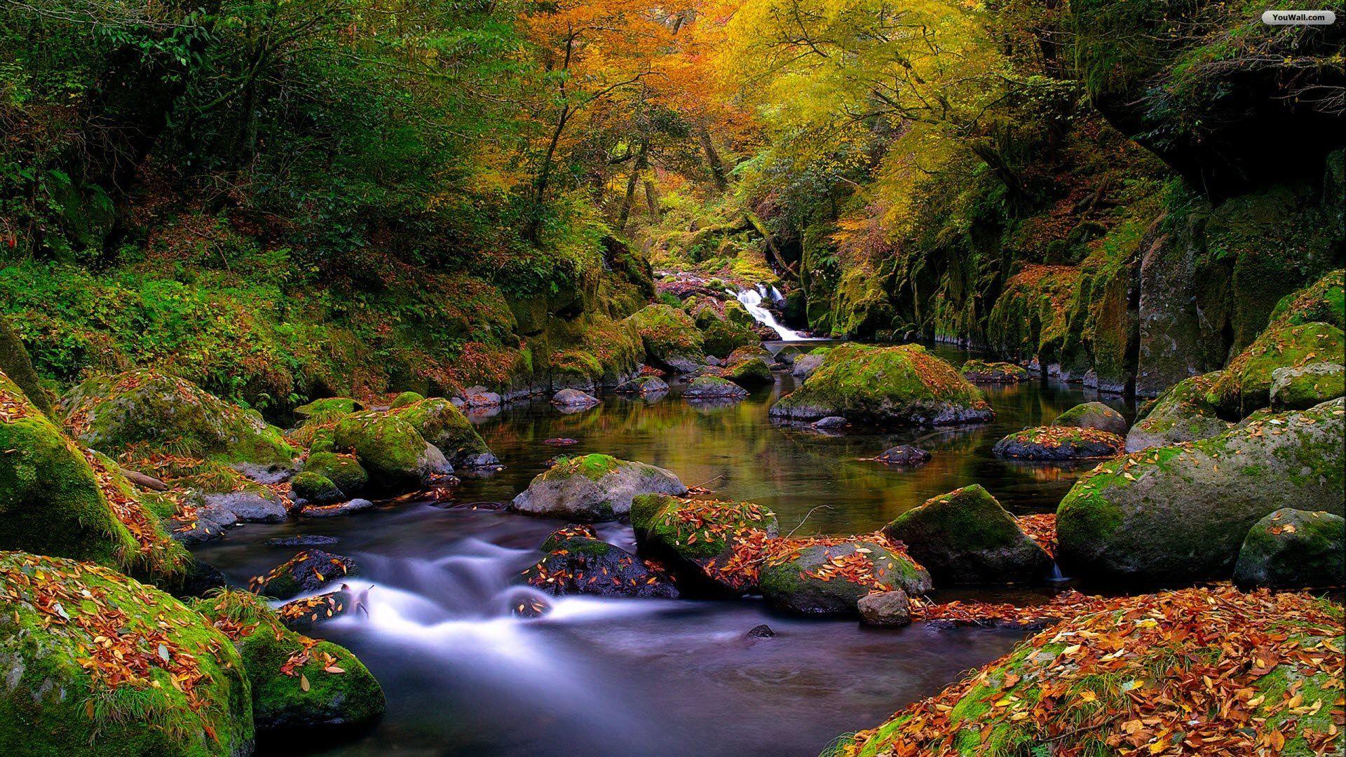 Autumn Landscape Image For Facebook