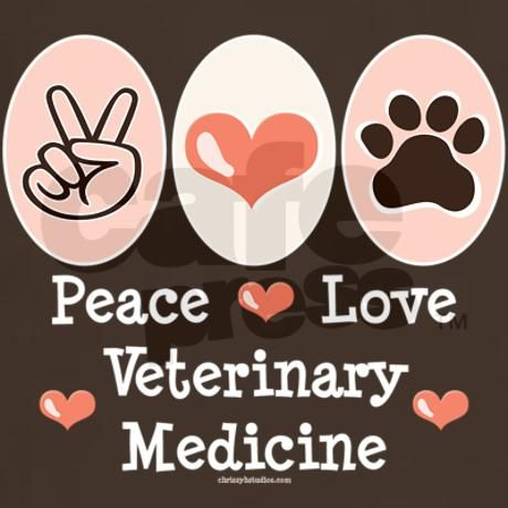 vet med This is an example page it's different from a blog post because it will stay in one place and will show up in your site navigation (in most themes) most.