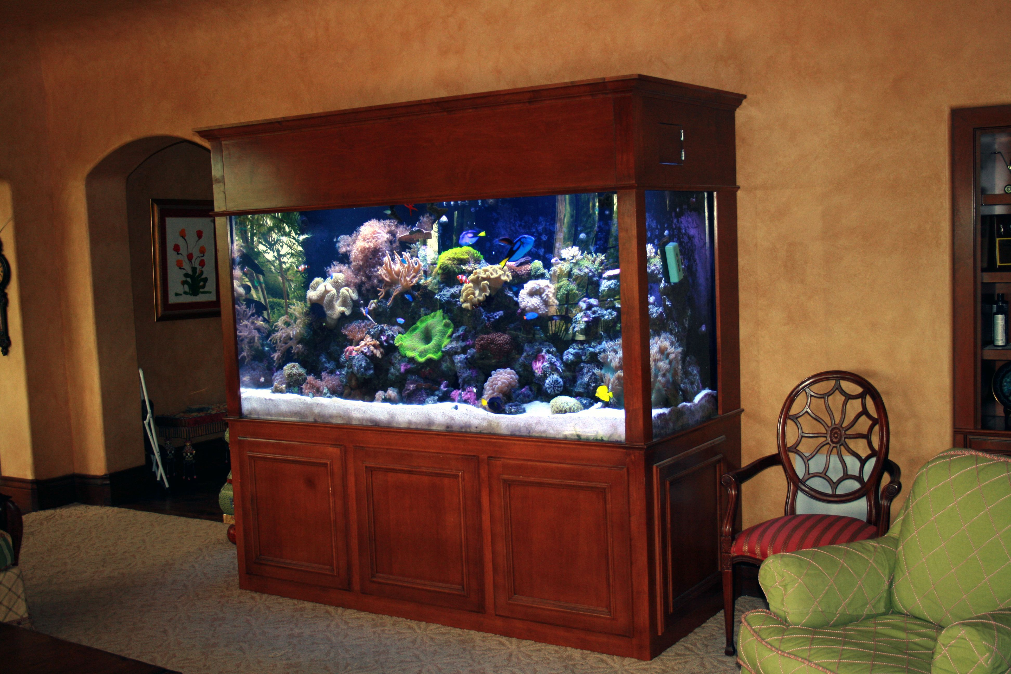 26 Unique Aquarium Furniture Ideas, Innovative And Reliable