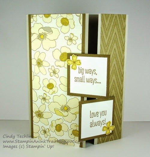 Stampin' an Ink Trail: One Sheet Wonder Series - Cards A & B
