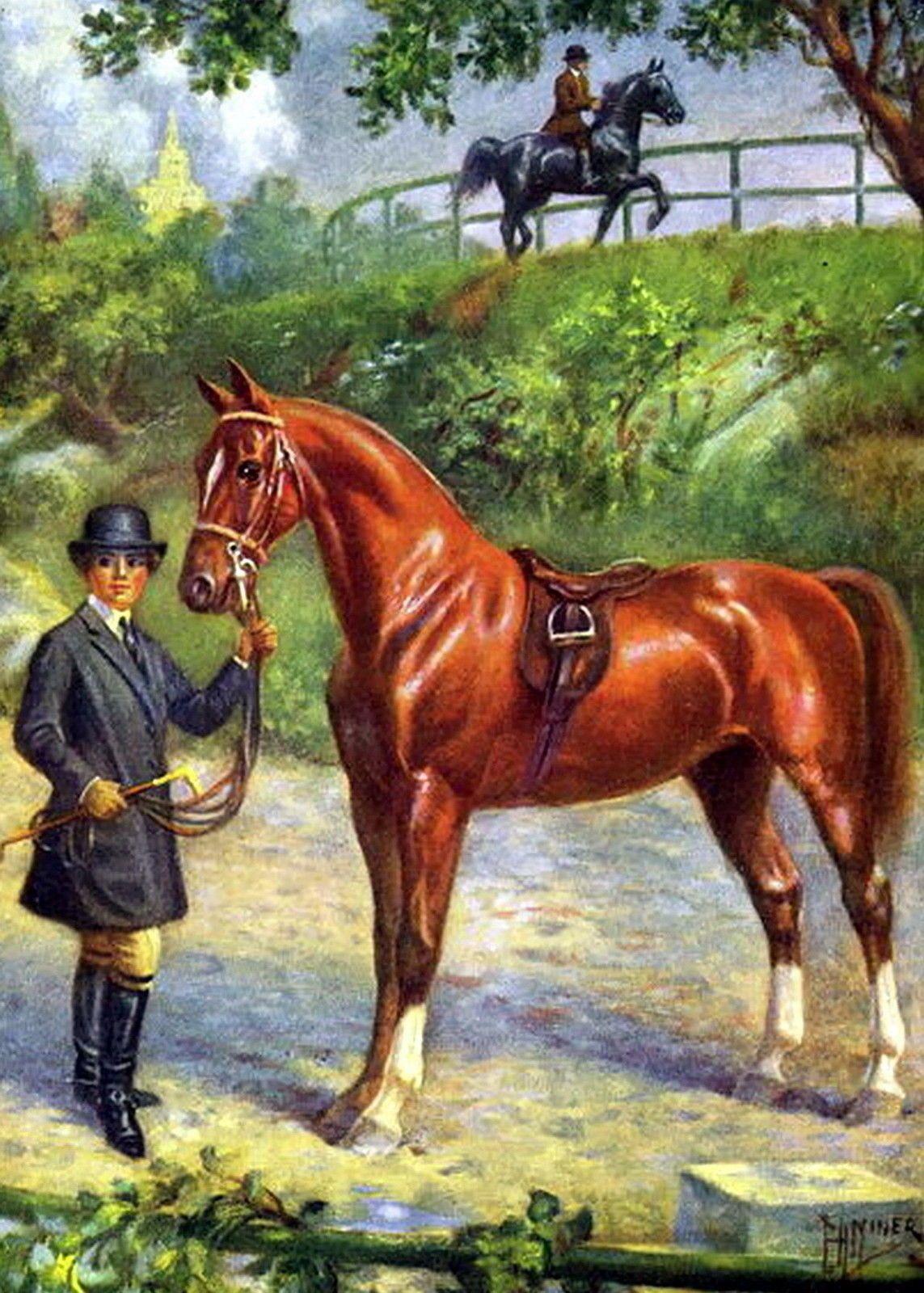 8x10 Equestrian Print American Saddle Horse Saddlebred Parade Mount Trail Riding 5 00 Art Print American Saddlebred Saddle Horse Horse Painting Art Horses [ 1600 x 1143 Pixel ]