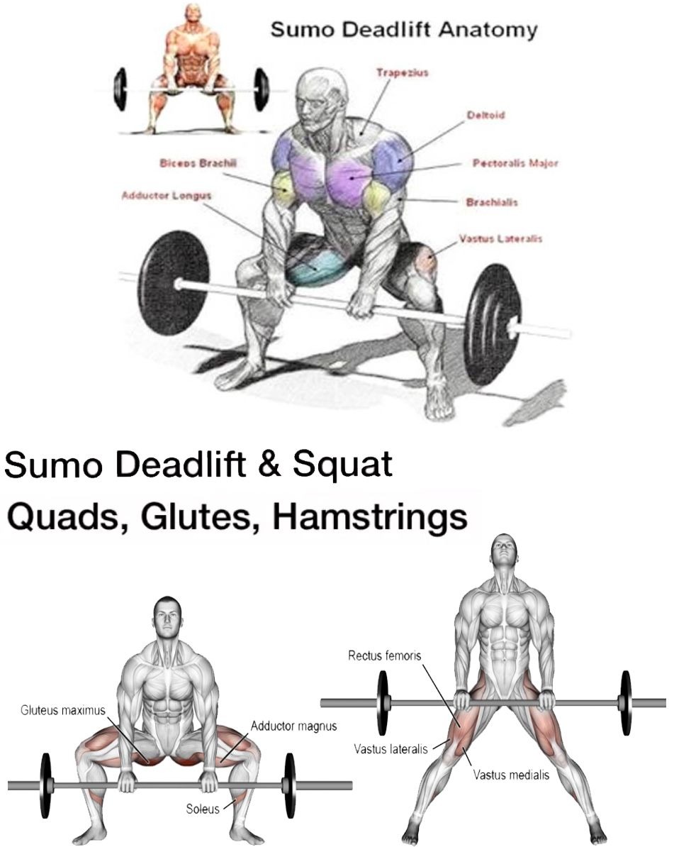 The Sumo Deadlift Here S The Right Way Deadlift Leg And Glute Workout Squats