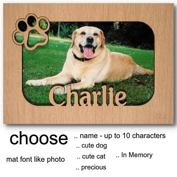 Personalized Name Photo Mat Frames Your Favorite Pet Dog Cat Lover Gift