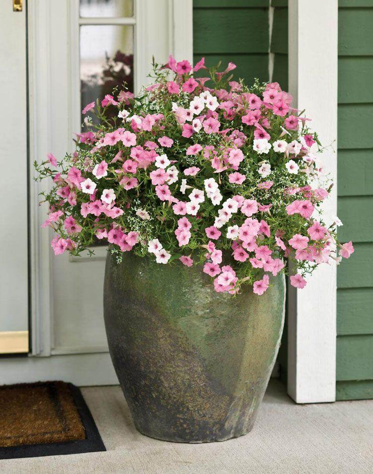 20+ Front porch flower arrangements inspirations