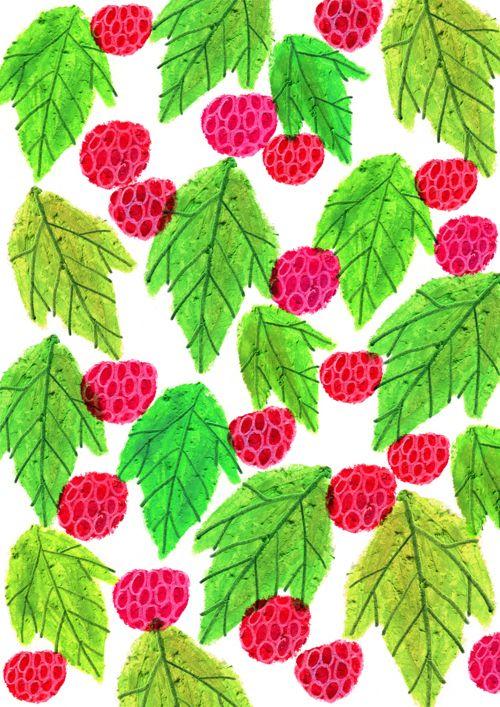 berry - Bonbonhori