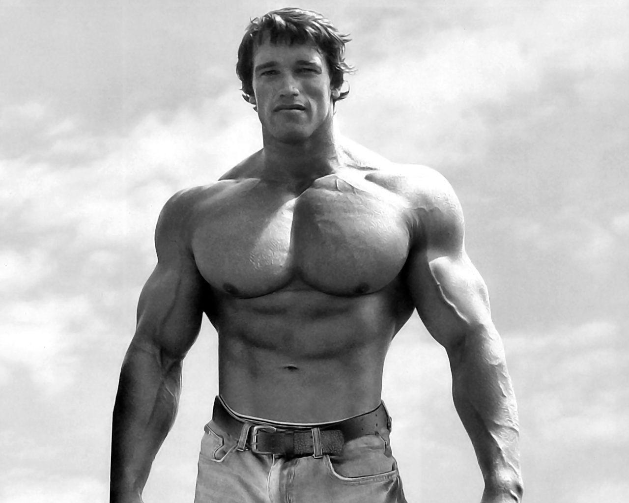 Muscle Guys Men Arnold Schwarzenegger Muscles Muscular Fresh New