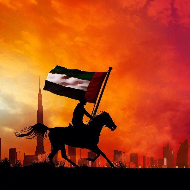 Uae National Day Gifts Burj Khalifa: 11/3/14 UAE FLAG DAY....PHOTO: Mish3alyousif