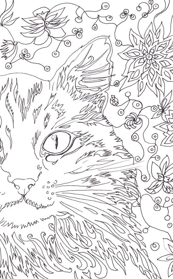 Cat Coloring Pages Art Therapy Printable Floral Digital Page Adult