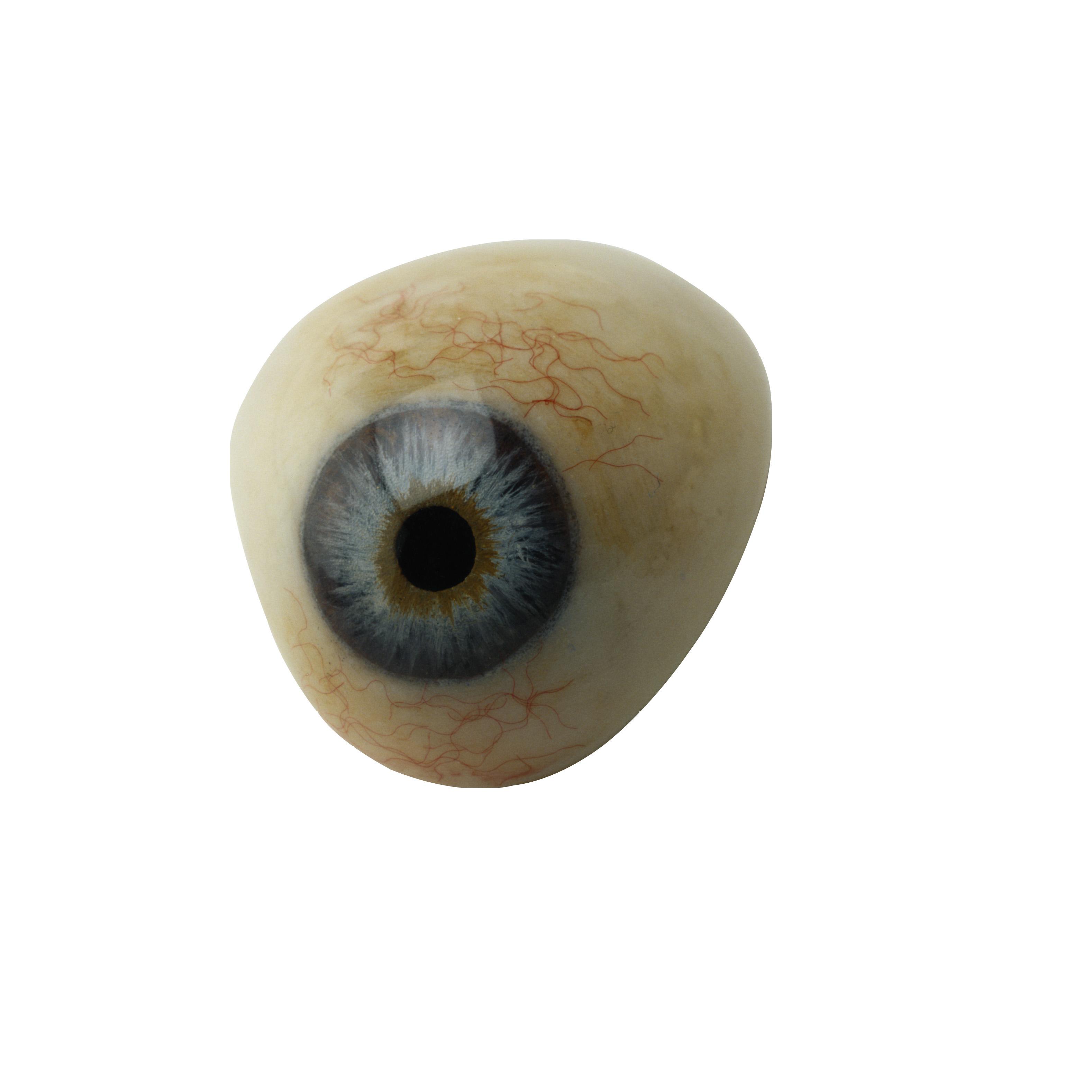 Eye Transparent Png By Absurdwordpreferred Deviantart Com On Deviantart Creepy Eyes Cartoon Girl Eyes Light Background Images