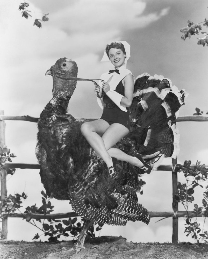 Women Hanging Out With Turkeys A Thanksgiving Tradition For The