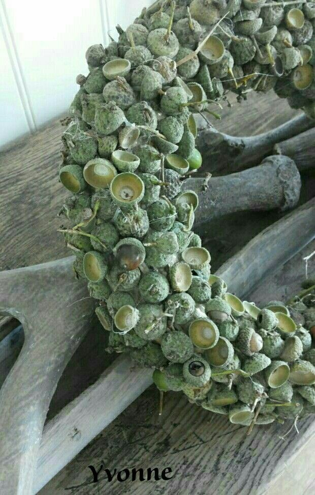 Photo of ** wreath                                                                       …