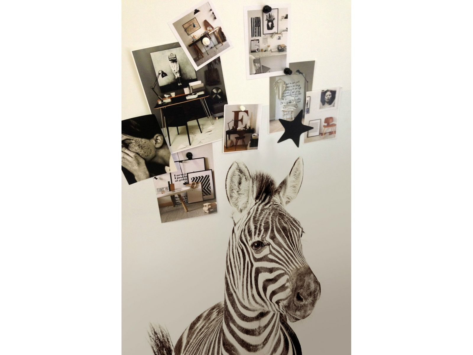 Behang Kinderkamer Zebra : Magneet behang dierenprint zebra groovy magnets animals