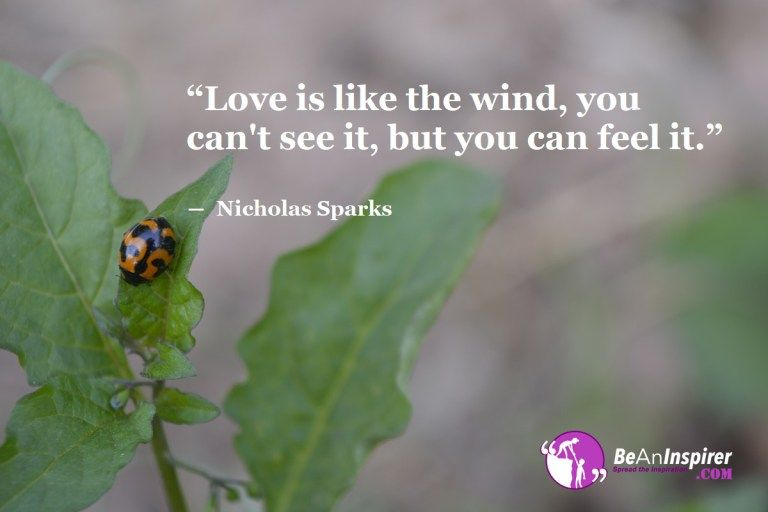 Top 100 Love Quotes And Sayings With Nature Photographs Love