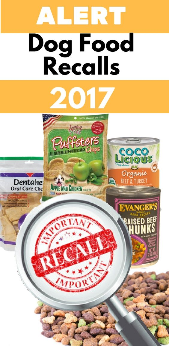 2017 Dog Food Recall List Is Your Dog Safe Funny Furry Friends